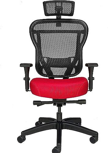 Oak Hollow Furniture Aloria Series Office Chair Ergonomic Executive Computer Chair
