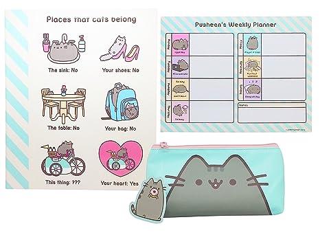 Pusheen de vuelta a la escuela organizador Set – Carpeta de cartón, organizador de escritorio