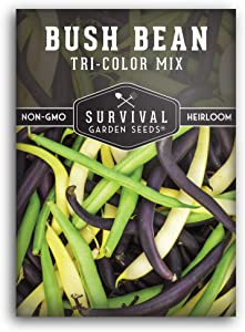 Survival Garden Seeds - Tri-Color Bean Seed for Planting - Packet with Instructions to Plant and Grow in Your Home Vegetable Garden - Non-GMO Heirloom Variety