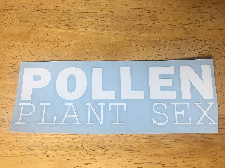 Pollen plant sex Car Truck Decal 8x2.4