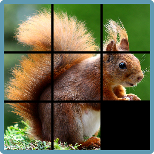 Sliding Puzzle ()