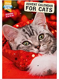 Trixie Calendrier De L Avent Pour Chat 24 Cases Amazon Fr