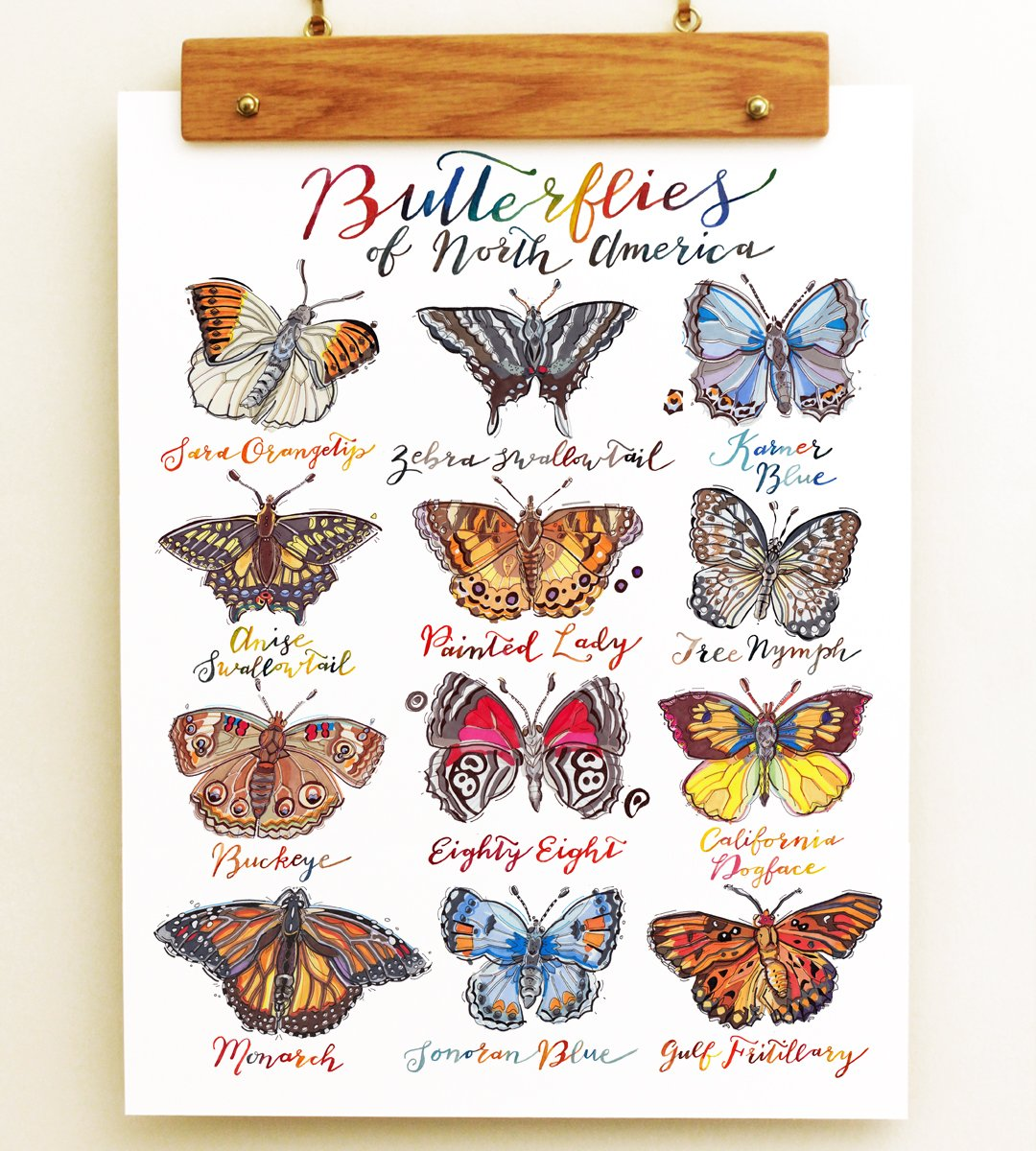 Butterfly Print. by LouPaper