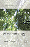 Phenomenology (Palgrave Philosophy Today)