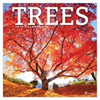 Trees 2019 Calendar