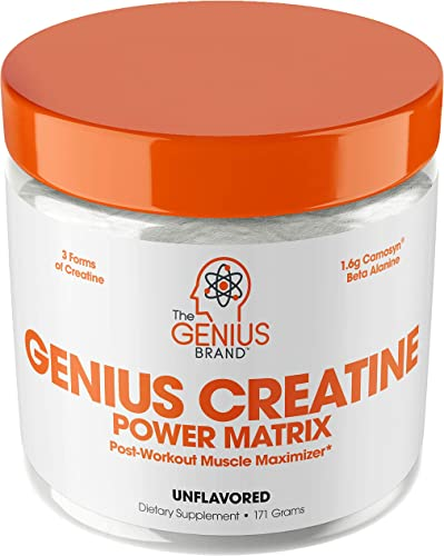Genius Creatine Powder Pro Post Workout Recovery Drink for Lean Muscle Gain Creapure Monohydrate, HCL Beta Alanine Natural Anabolic Mass Gainer for Men Women – Serious Muscle Builder, 171G