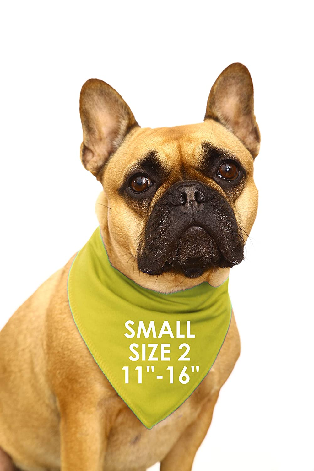 Glaucoma /& Cataracts Spoilt Rotten Pets BE KIND IM BLIND Yellow Warning Alert Dog Bandana For Dogs With Impaired Site Multicolor