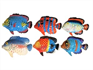 Multi-color Exotic Set of (6) Decorative Wall Decor Fish with Free Fish Net