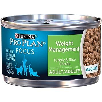Amazon.com: Comida para gatos húmeda Purina Pro Plan, Focus ...