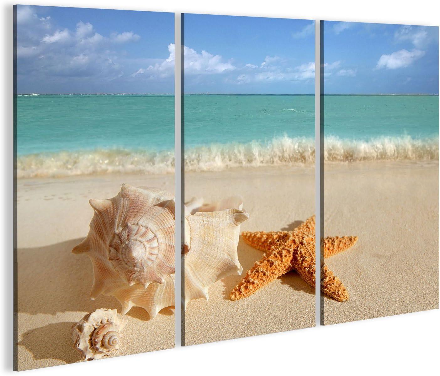 Cuadro Cuadros Conchas Estrellas de mar en la arena de color turquesa verano tropical del Caribe símbolo viajes de vacaciones Impresión sobre lienzo - Formato Grande - Cuadros modernos EAY