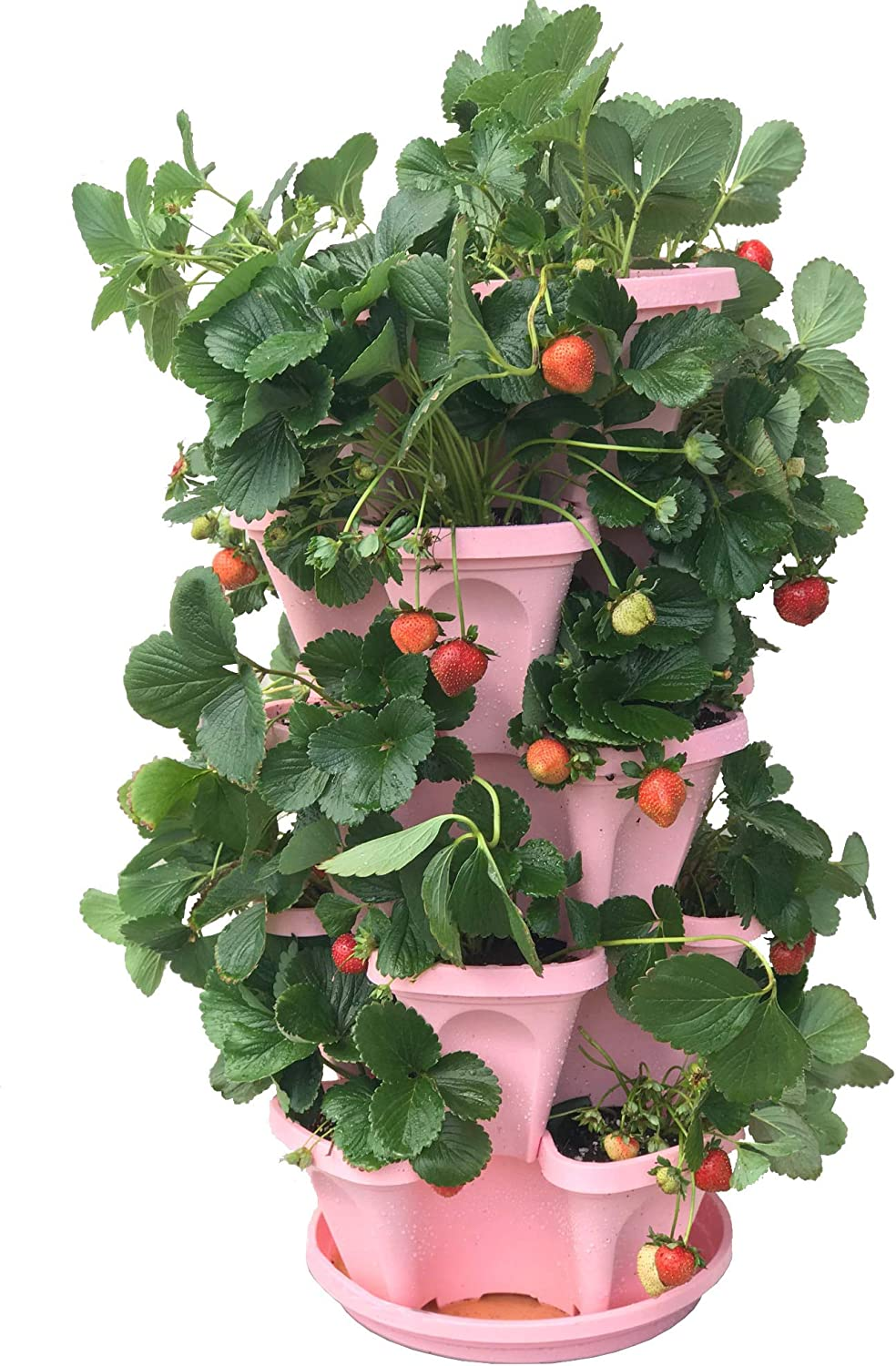 5-Tier Strawberry and Herb Garden Planter – Stackable Gardening Pots with 10 Inch Saucer