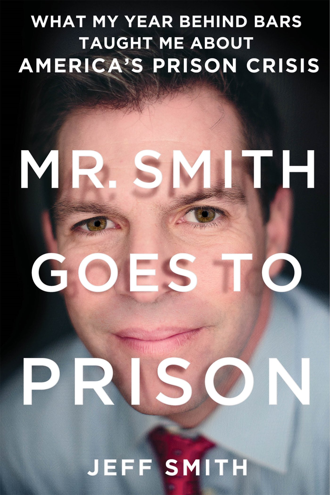 Read Online Mr. Smith Goes to Prison: What My Year Behind Bars Taught Me About America's Prison Crisis pdf