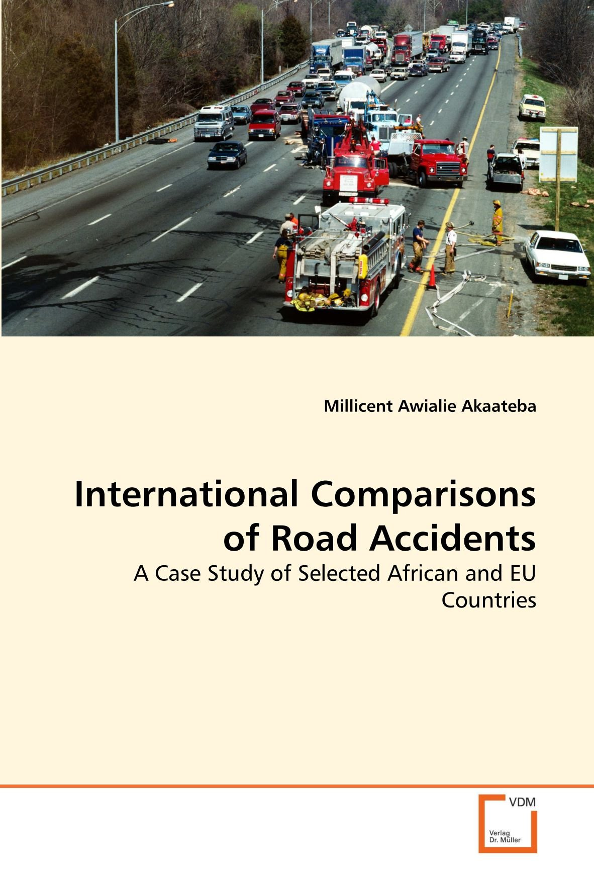 International Comparisons of Road Accidents: A Case Study of Selected African and EU Countries ebook