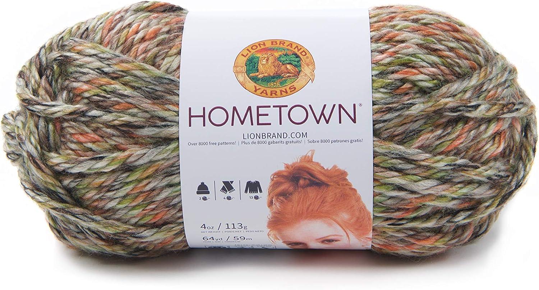 Phoenix Azalea 1 skein Lion Brand Yarn 135-208 Hometown Yarn
