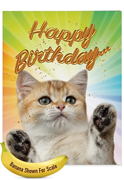 J6112IBDG Jumbo Birthday Card Cat Sent Greetings Featuring Images Of Fluffy Felines Extending