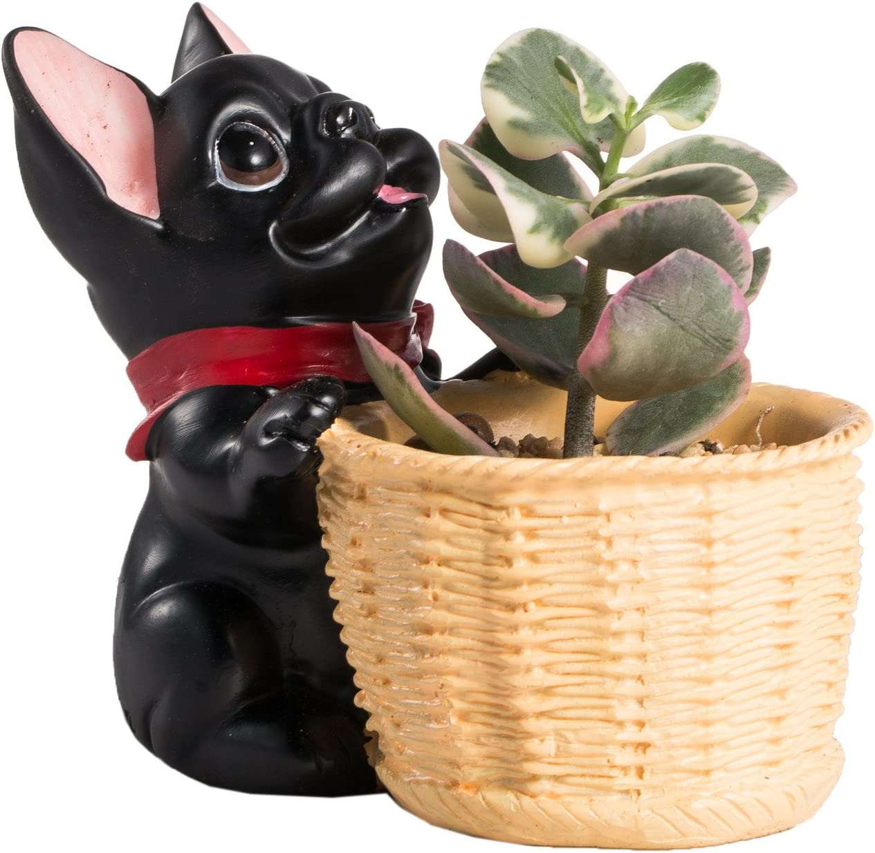 Tabletop Decorative Black French Bull Dog Resin Planter Plants Cactus Succulent Container Home Garden Display Flower Pot Decor Bonsai Miniature No Plants