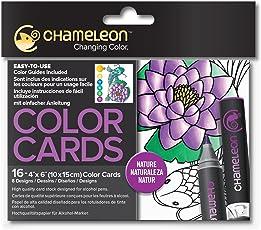 Chameleon chm0220016pieza naturaleza Color Tarjetas, 10,2x 15,2cm