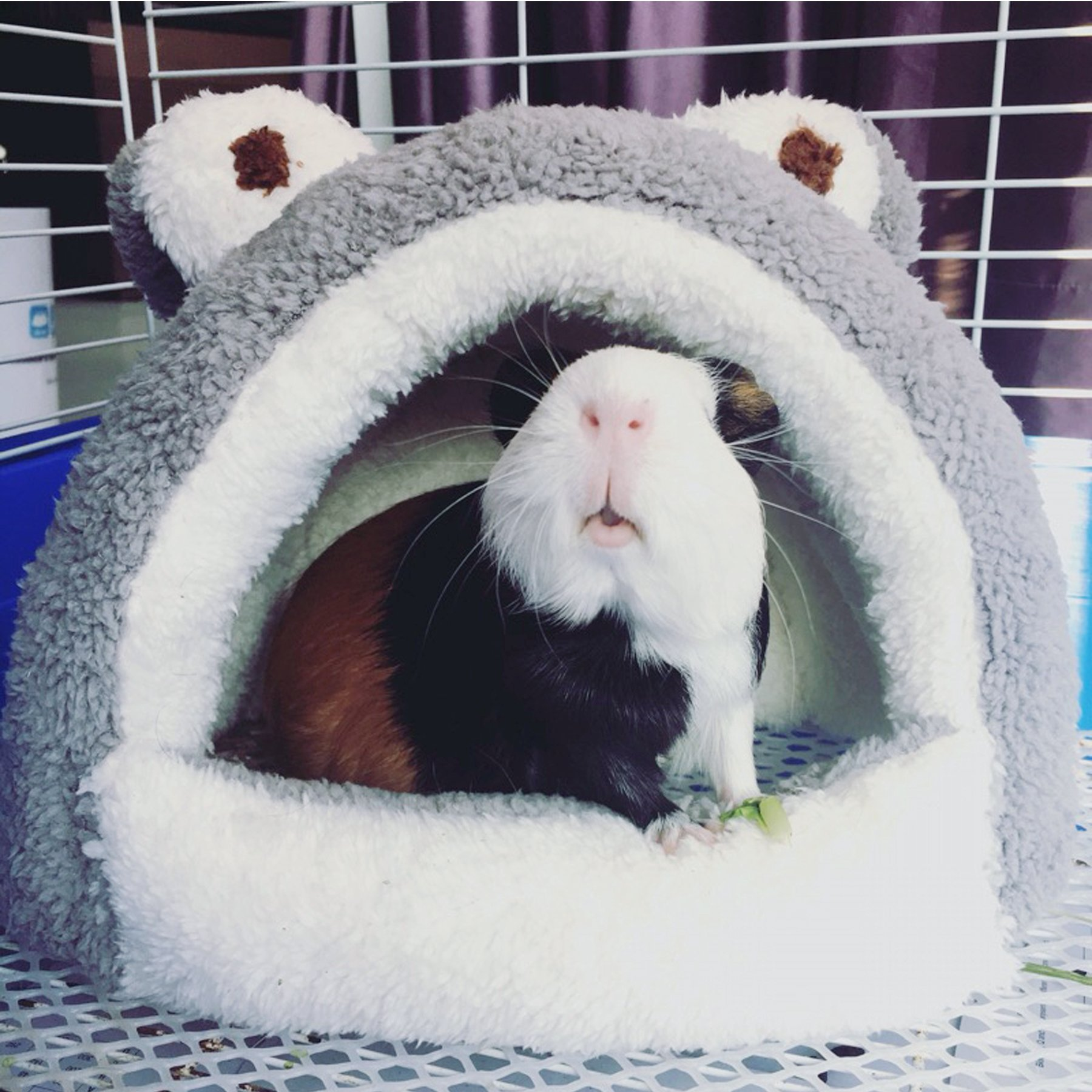 Alfie Pet by Petoga Couture - Tobin Sleeping Cave Bed for Small Animals like Dwarf Hamster and Mouse - Color: Grey by Alfie (Image #2)