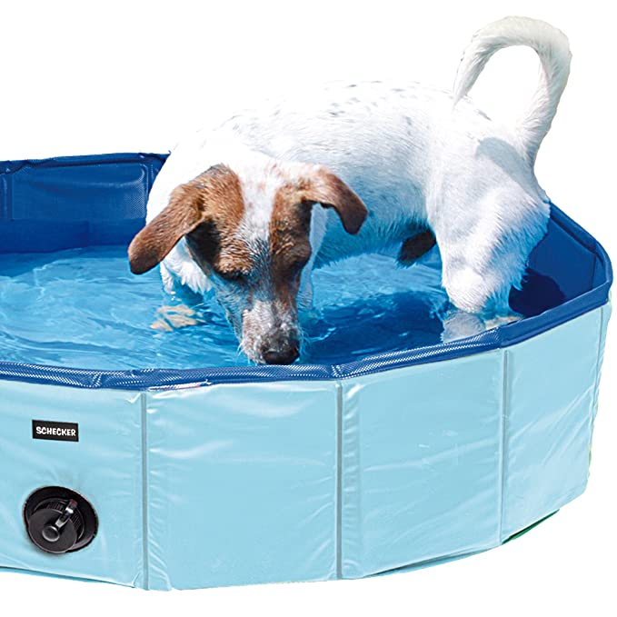 Doggy Pool Planschbecken für Hunde Swimmig Pool hundepool in S, M, oder XXL lieferbar
