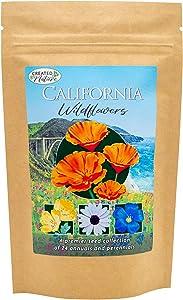 California Wildflower Seed Mix - Over 54,000 Premium Seeds - by 'createdbynature'