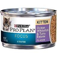 Purina Pro Plan Focus Chicken & Liver Entree Wet Kitten Food