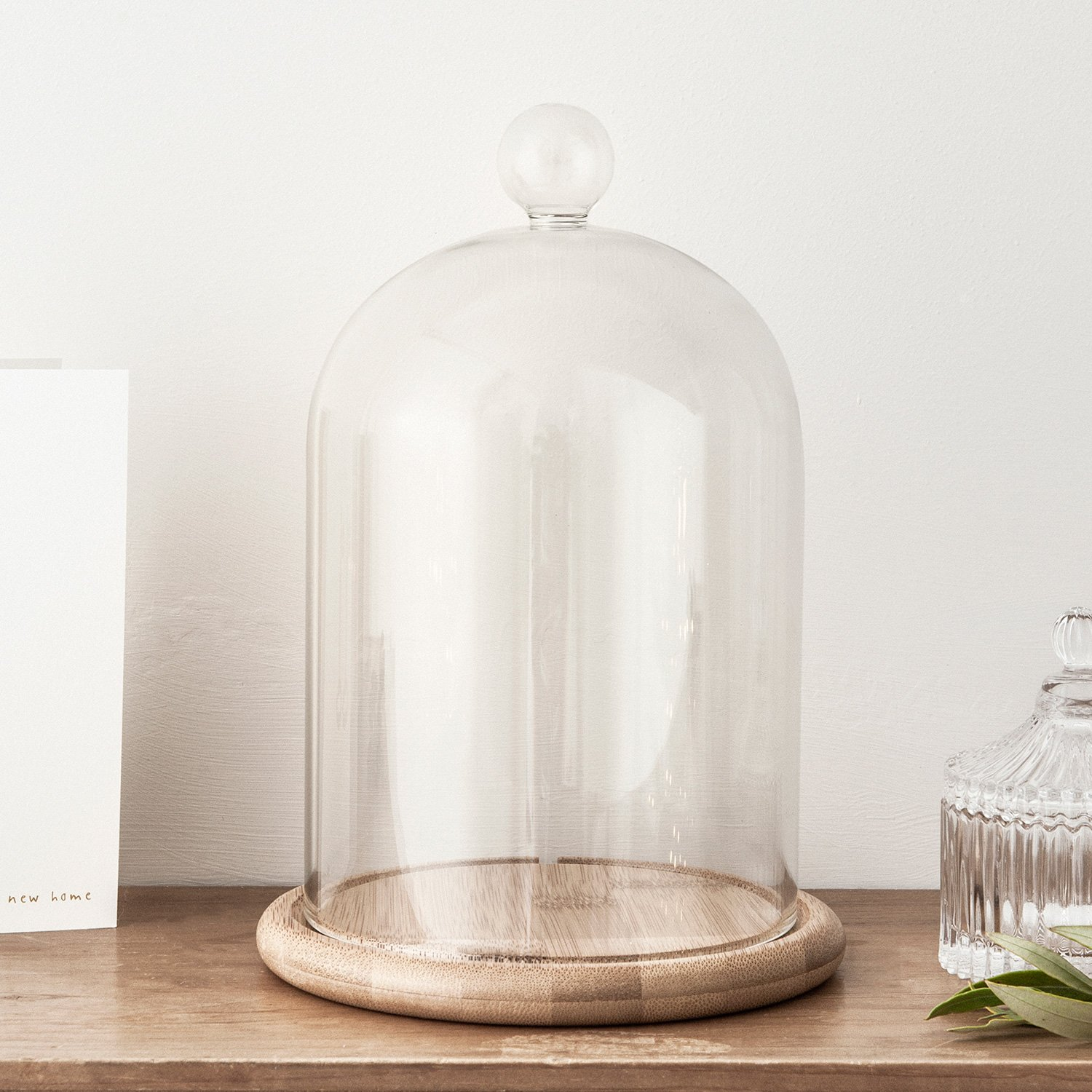 Glass Cloche Bell Jar Display Dome with Bamboo Base - 9'' x 6''