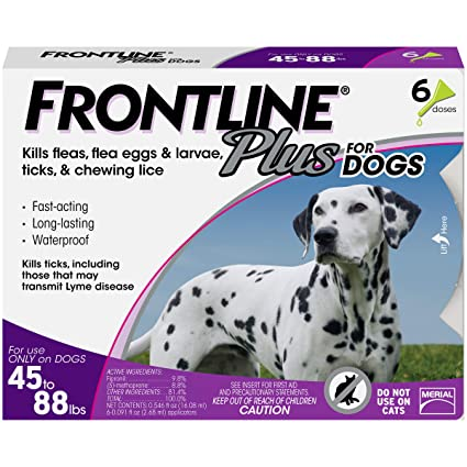 Best Dog Flea Medicine 2020 Amazon.: Frontline Plus for Dogs Large Dog (45 to 88 pounds