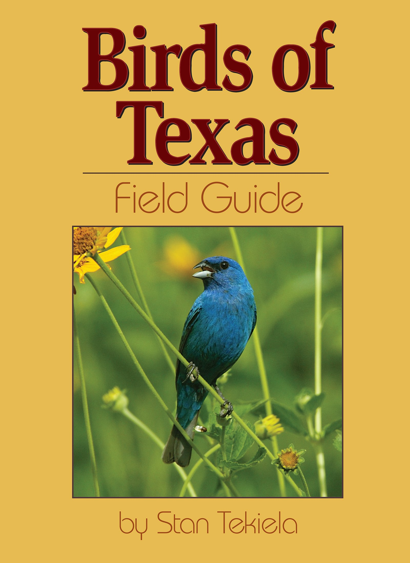 birds of texas field guide bird identification guides stan