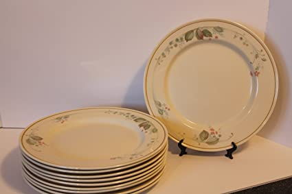 Steelite International England SET/5 Dinner Plates 11 3/4\u0026quot; Ivory Base Color & Amazon.com | Steelite International England SET/5 Dinner Plates 11 3 ...