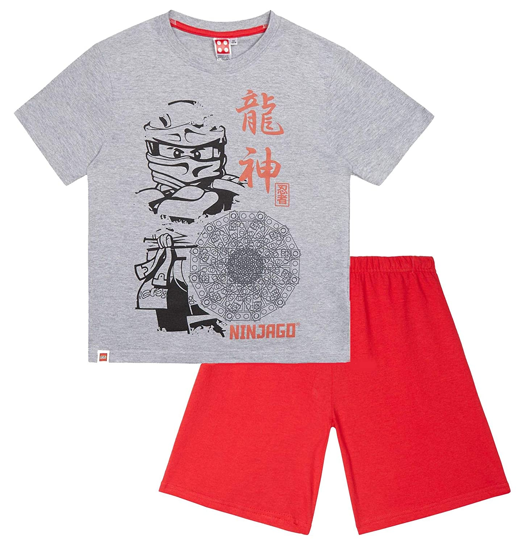 LEGO Ninjago Boys Pyjamas: Amazon.es: Ropa y accesorios