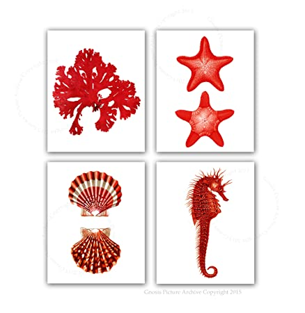 Coral Red Beach Wall Decor Set of 4 Unframed Seashells Seahorse Seaweed Starfish Prints