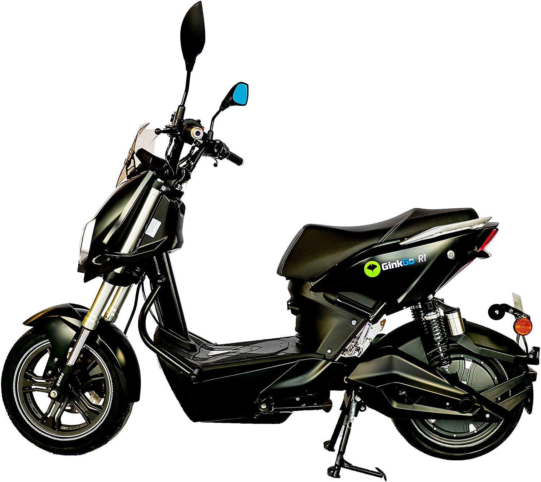 Ginkgo R1 Elektroroller Mit Straßenzulassung Zweisitzer 45 Km H Bis Zu 120 Km Herausnehmbarer Lithium Ionen Akku Schwarz Auto