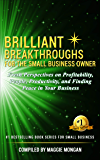 Brilliant Breakthroughs For The Small Business Owner (vol 2): Fresh Perspectives on Profitability, People, Productivity, and Finding Peace in Your Business