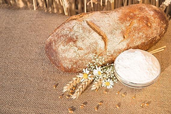 Food to Live Harina de cebada Bio certificada (Eco, Ecológico, no OGM, a granel) (4 libras): Amazon.es: Alimentación y bebidas