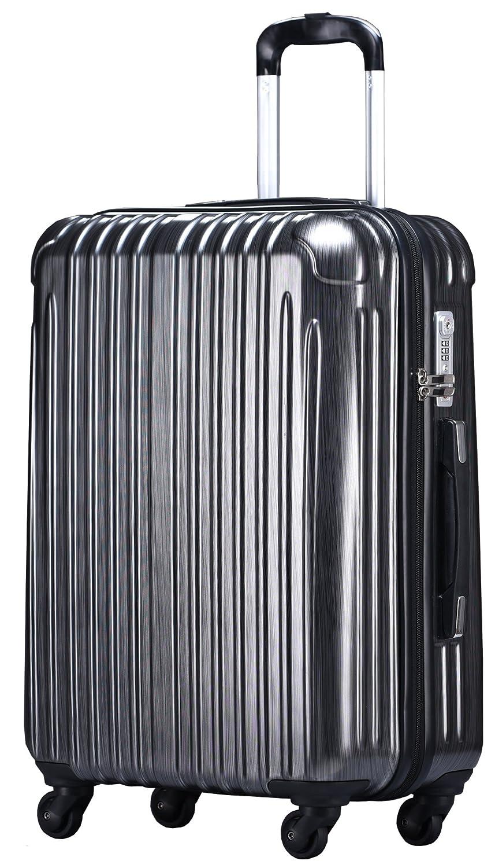 ラッキーパンダ スーツケース TY001 ハード 超軽量 TSAロック ファスナータイプ 機内持込 B01AA20MVE Lサイズ(長期旅行向け)|ストライプグレー ストライプグレー Lサイズ(長期旅行向け)
