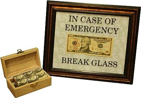 Vinyl Decal in Case of Emergency Break Glass