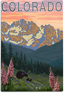 product image for Lantern Press Colorado, Bears and Spring Flowers (12x18 Aluminum Wall Sign, Wall Decor Ready to Hang)