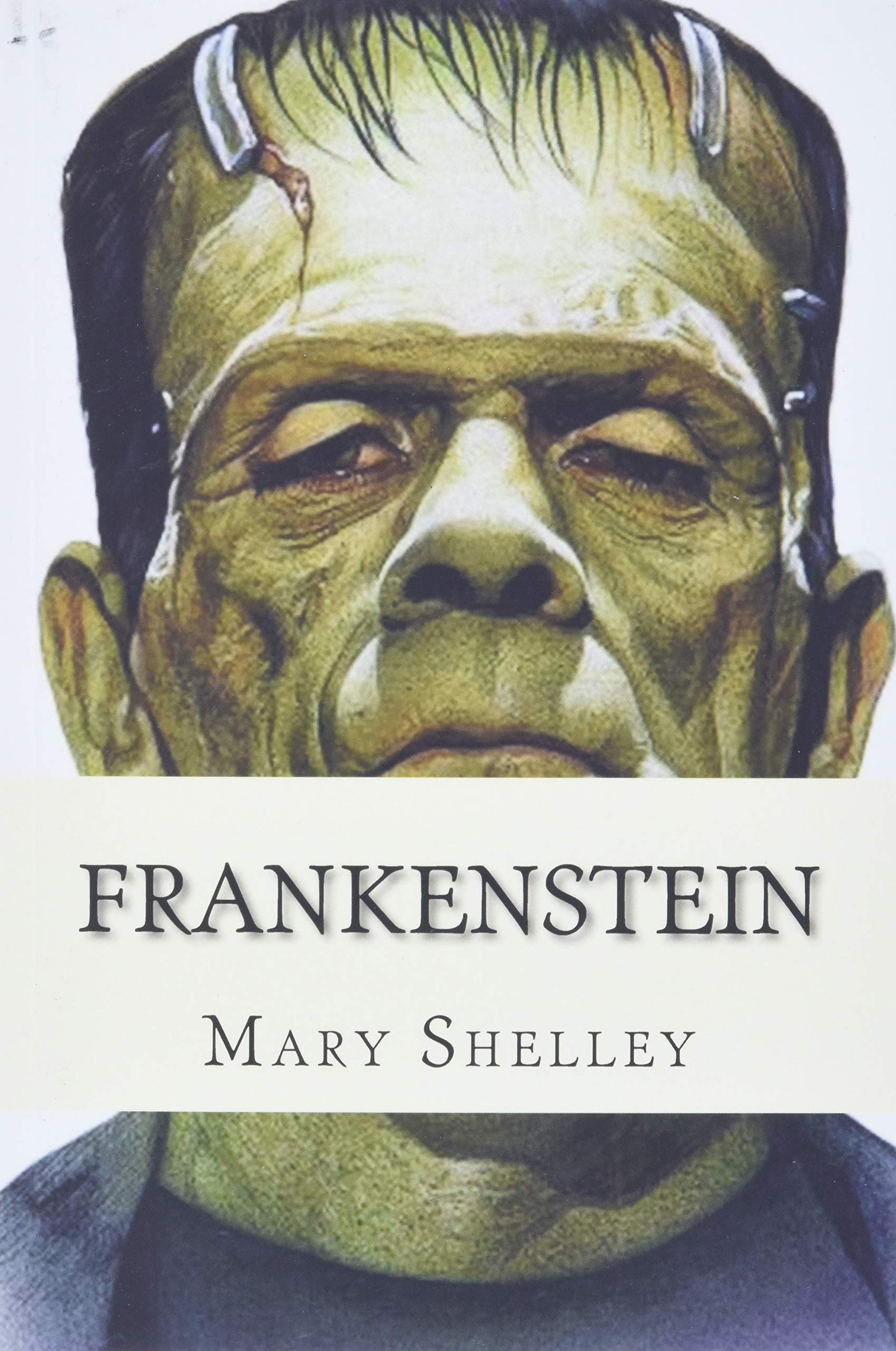 Frankenstein: Shelley, Mary: 9781512308051: Amazon.com: Books
