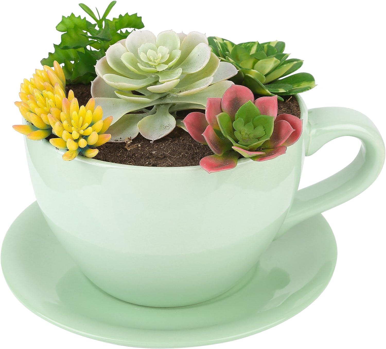 Lifestyle Porcelain Tea Cup and Saucer Shaped Garden Patio Office Flower Planter Plant Pot Tub,Green Large Flowers Pot,Size L
