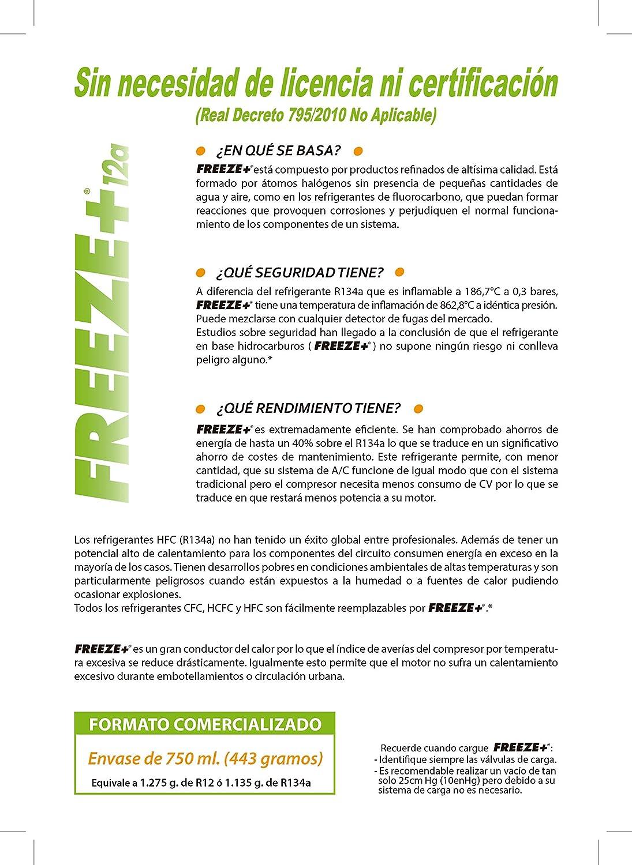 FREEZE Gas para la Recarga de Sistemas de Refrigeración para Sistemas con Gas R134a / R12 / R1234yf: Amazon.es: Coche y moto
