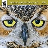 Owls WWF Mini Wall Calendar 2018