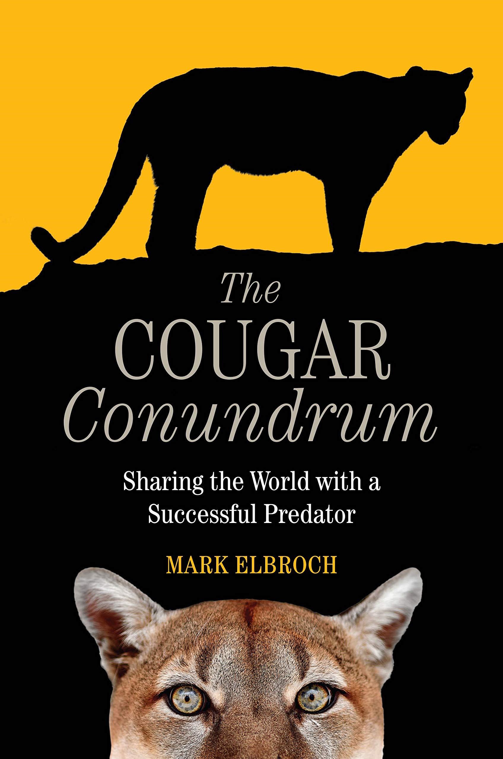 Site de rencontre cougar : les meilleures plateformes pour rencontrer une femme mure