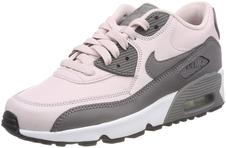 NIKE Air Max 90 LTR (GS), Chaussures de Rose/Gunsmoke-white-black Running Fille 37.5 EU|Gris (Barely Rose/Gunsmoke-white-black de 601) aa19aa