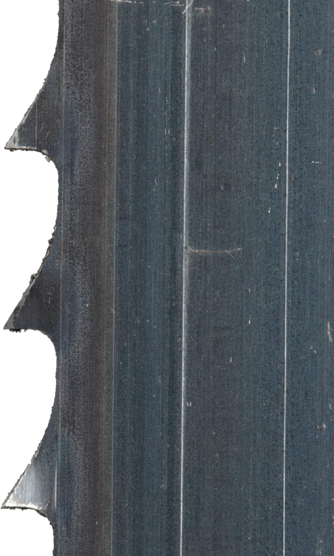 "B10-00535 Female Swivel Hos 3//4/"" BSPT Female Thread x5//8/"" Hose Tail"