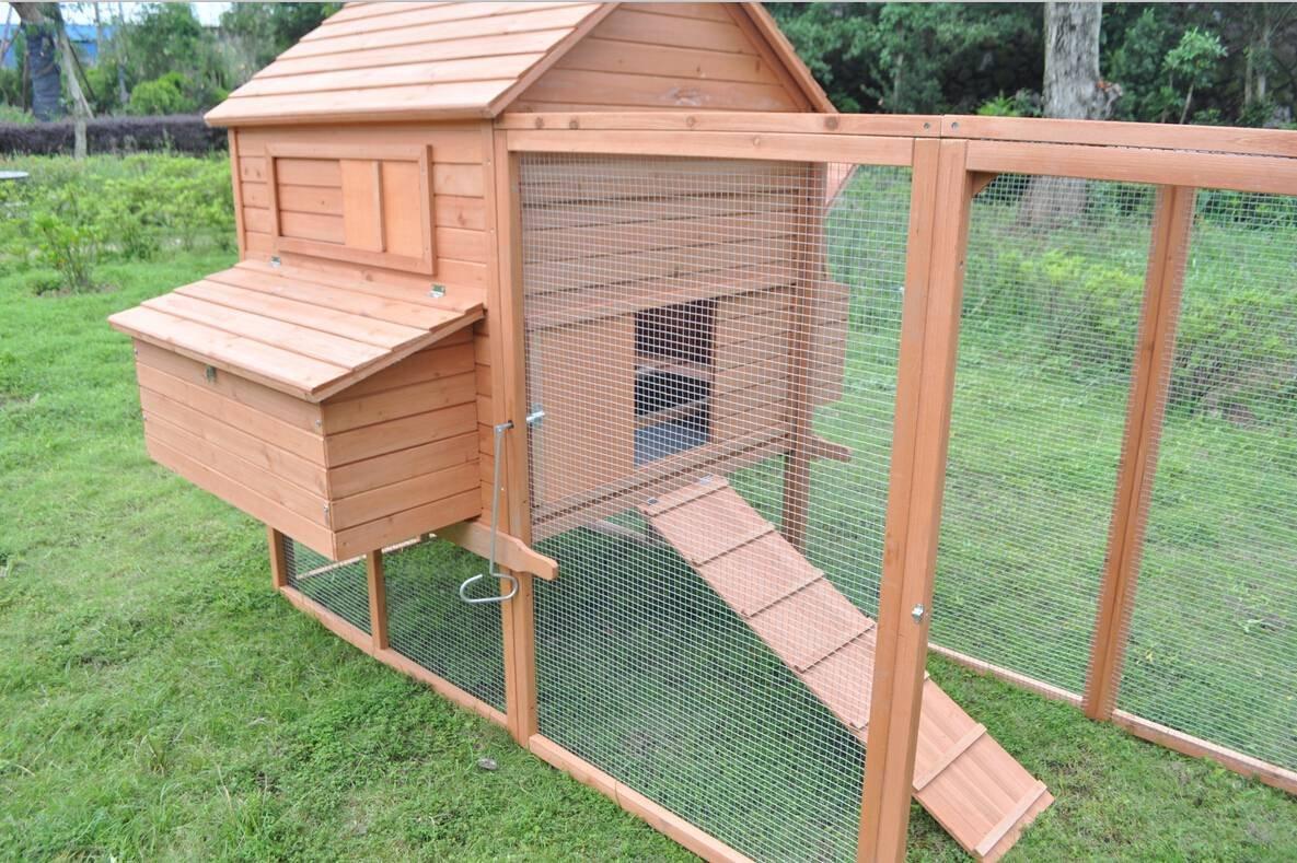 amazon com ardinbir huge 145 u0027 backyard chicken coop bantam hen