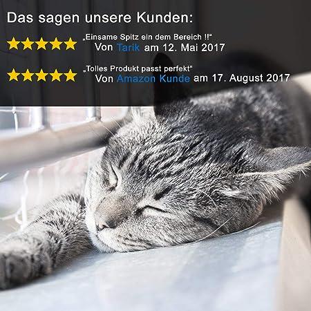 NEEZ Red para Gatos, de 3 x 4, 3x6, 3x8 m, para balcón, Transparente (3x4m): Amazon.es: Productos para mascotas