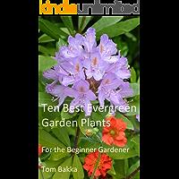 10 BEST EVERGREEN GARDEN PLANTS: For the Beginner Gardener (English Edition)
