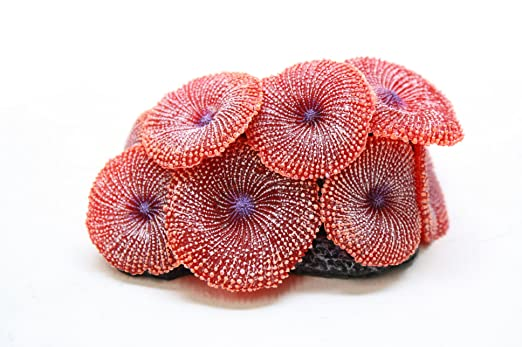 Christmas Tablescape Decor - Faux red stony coral aquarium and home décor