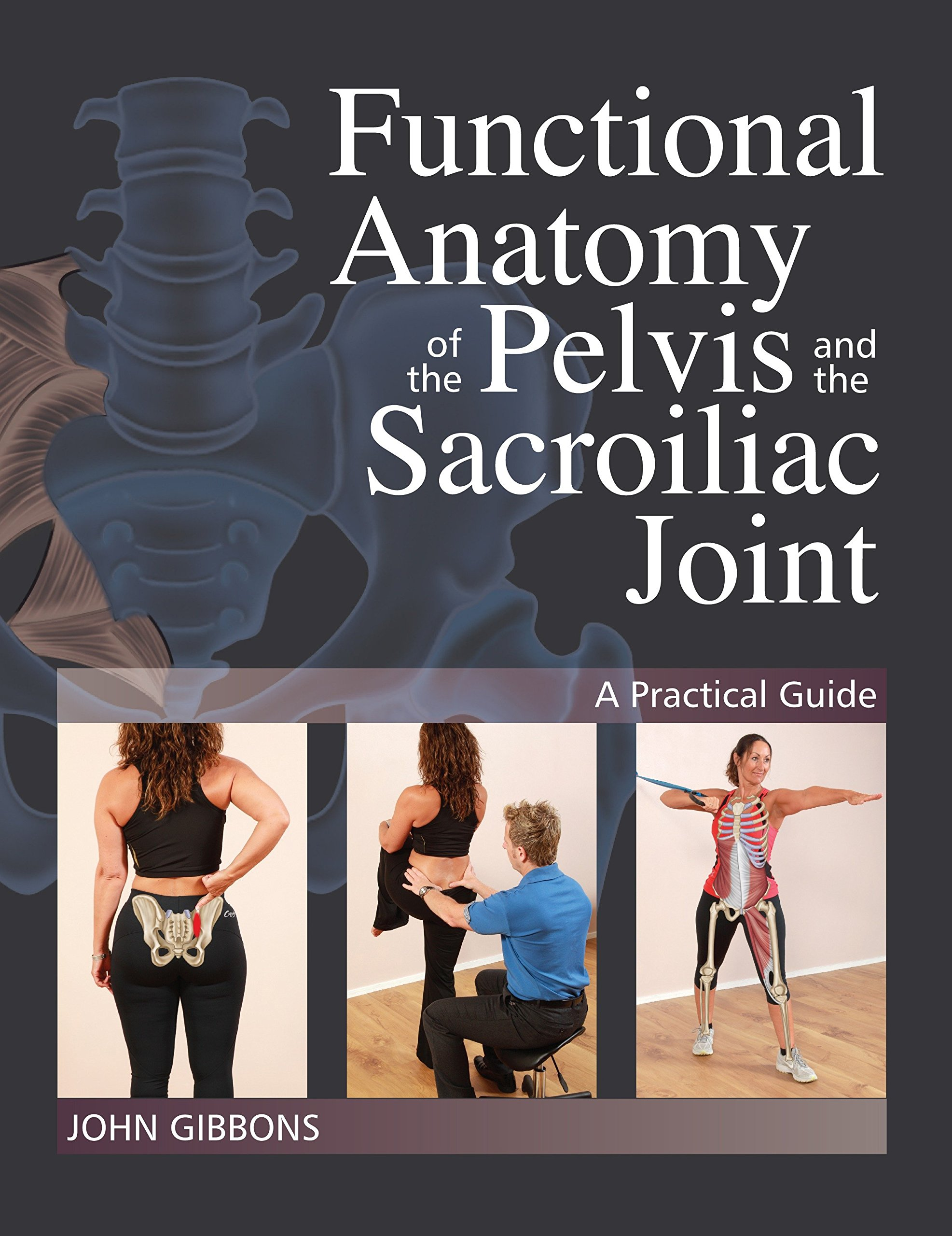 Functional Anatomy of the Pelvis and the Sacroiliac Joint: A ...
