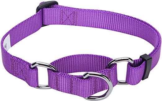 Blueberry Pet Essentials 19 Colors Safety Training